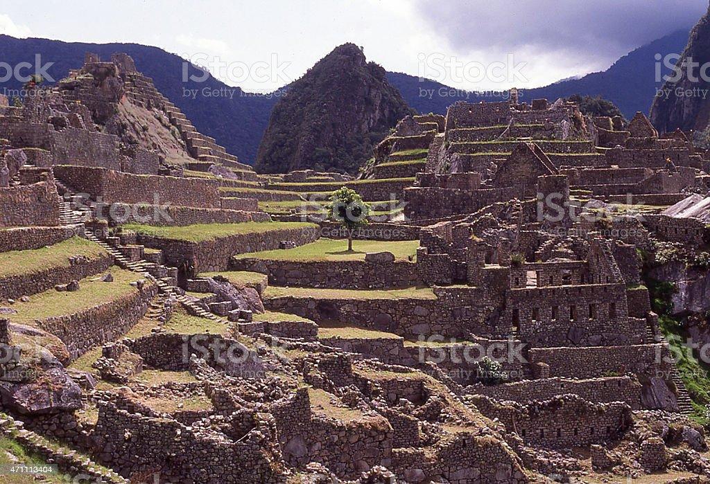 Las Terrazas Agrícola Borde De La Antigua Ciudad Inca Machu