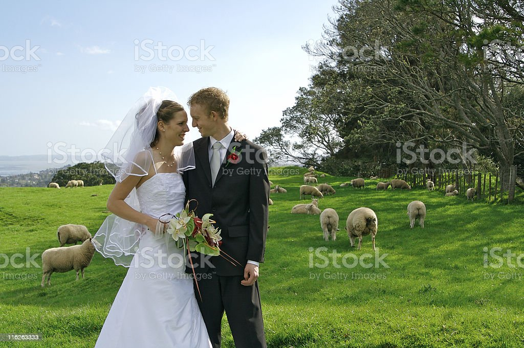 Agricultural wedding royalty-free stock photo