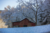Large red barn in winter snow with frosted trees.