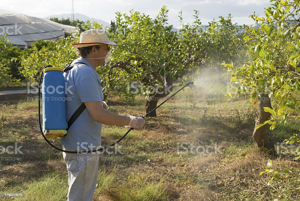 Agricultural worker royalty-free stock photo