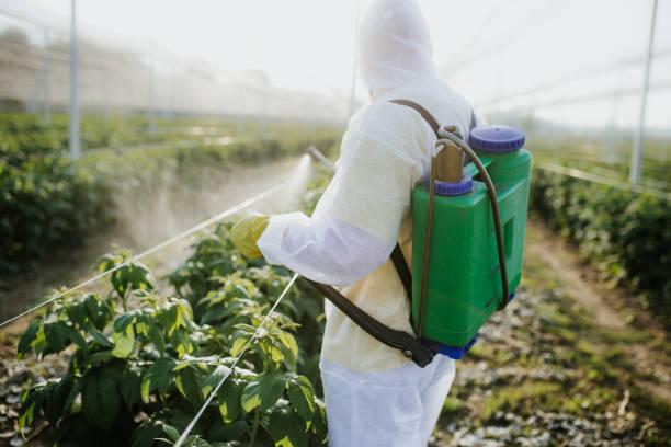 농업 노동자 그의 재산의 처리 - 독성 물질 뉴스 사진 이미지