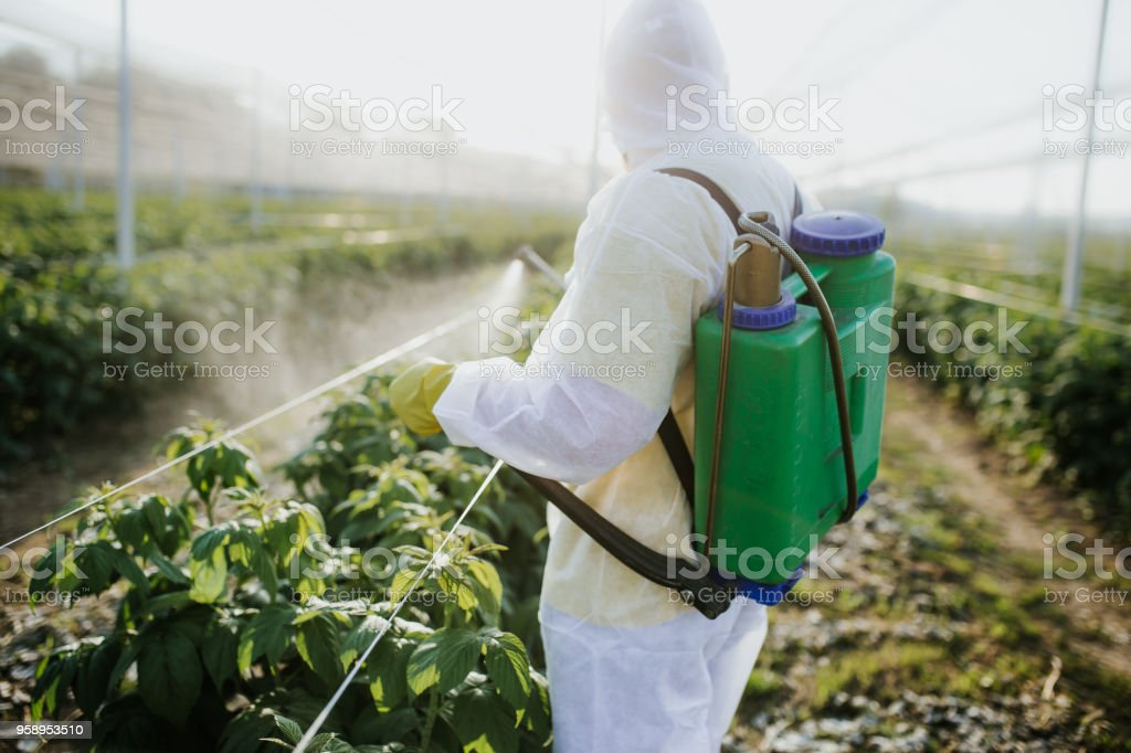 Agricultural worker takes care of his estate stock photo