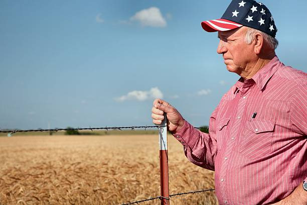 Agriculture: American Farmer or rancher by fence and wheat field stock photo