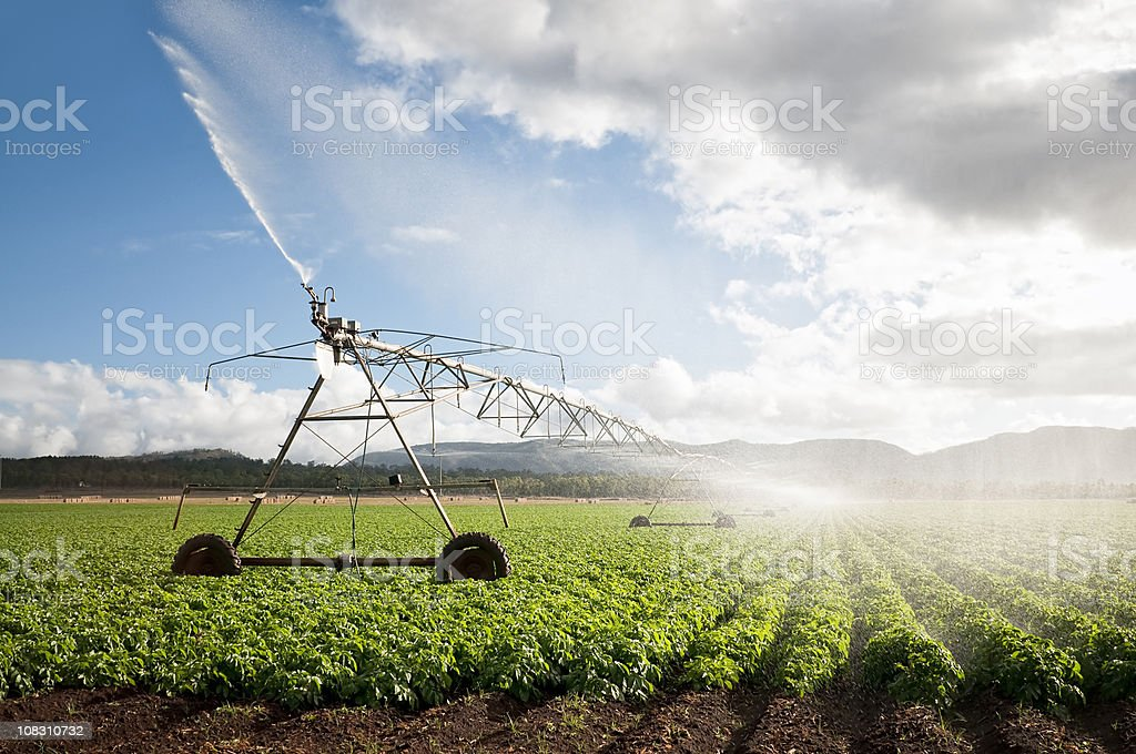 Agriculture: Crop Irrigation royalty-free stock photo