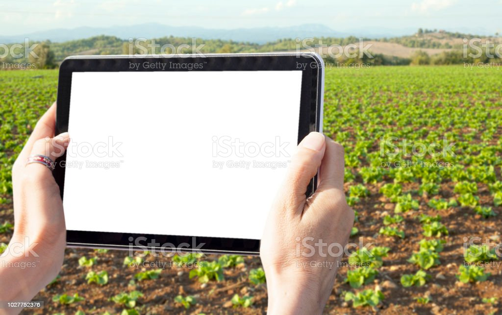 agriculture digital farming stock photo