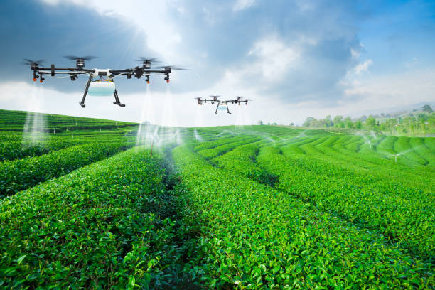 agriculture drone fly to sprayed fertilizer on the green tea fie - agriculture stock pictures, royalty-free photos & images