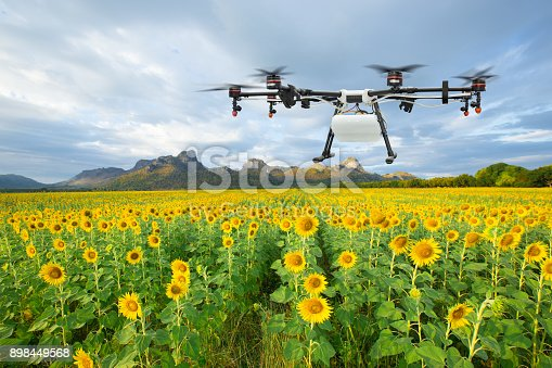 898449496 istock photo Agriculture drone flying on the sunflower field, Smart farm concept 898449568