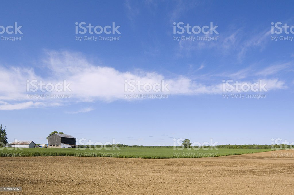 Agriculture farm royalty-free stock photo