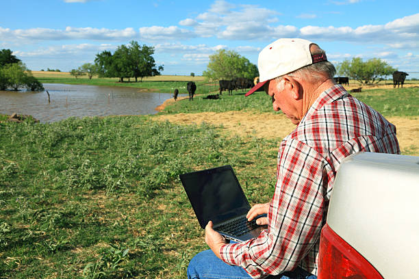 Agriculture: Farmer or rancher in field with Computer, Cattle, pond stock photo