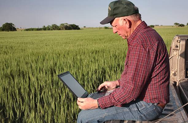 Agriculture: Farmer or rancher with Computer in a Wheat Field stock photo