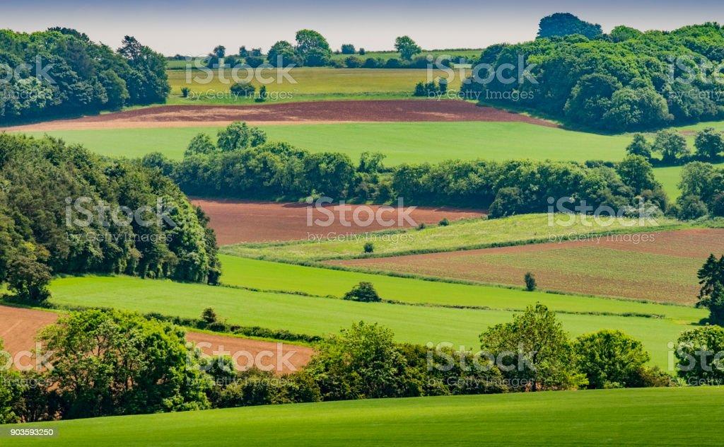 agriculture farmland cotswolds landscape gloucestershire england uk scenic landscape stock photo