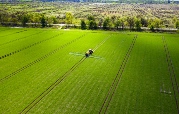 Agriculture field, tractor spraying pesticides stock photo