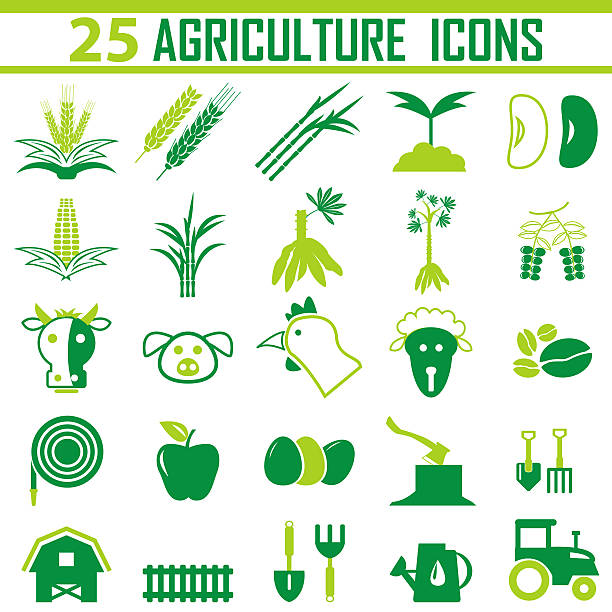 agriculture Icon, agriculture Icon Vector, - foto stock