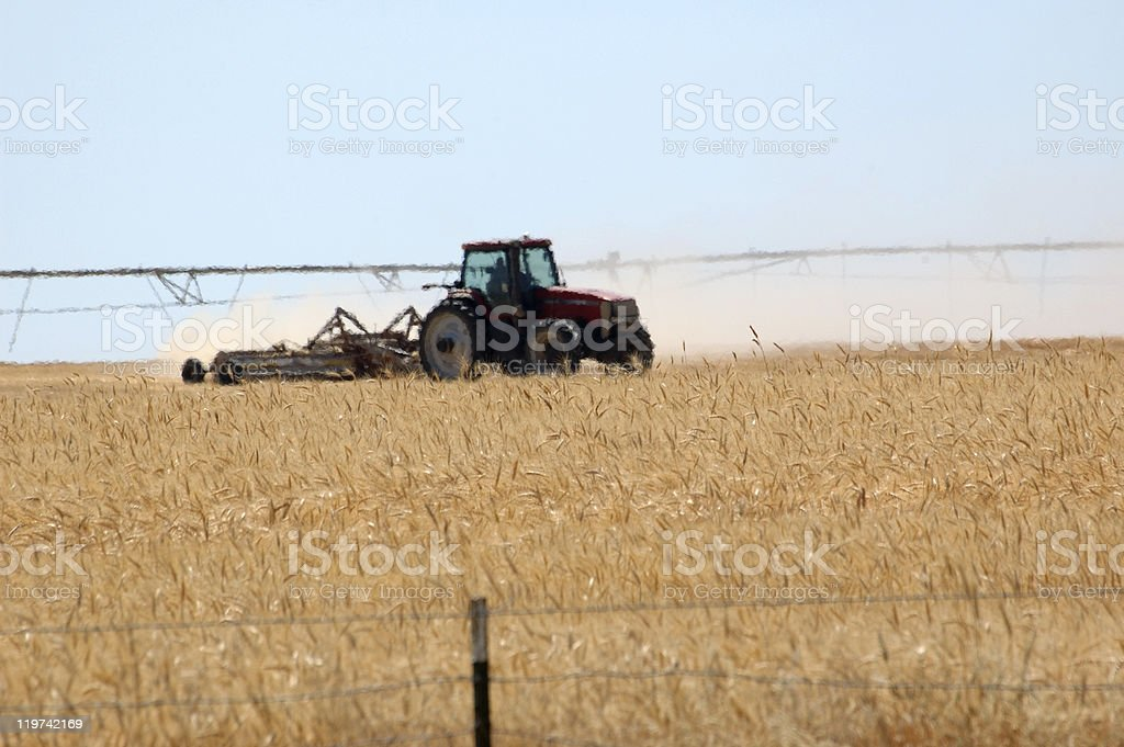 Agriculture in Southern Idaho. stock photo