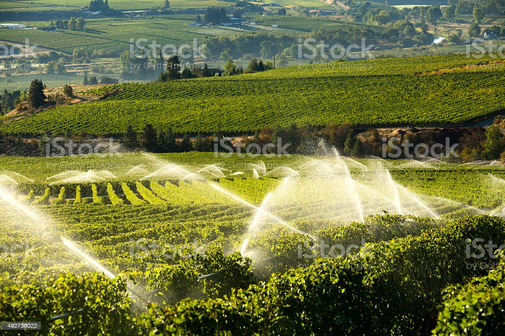 Image result for Agricultural Resources istock
