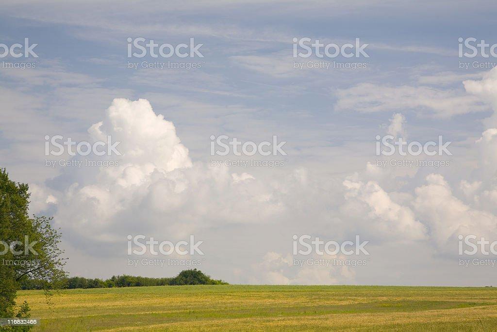 agriculture landscape stock photo
