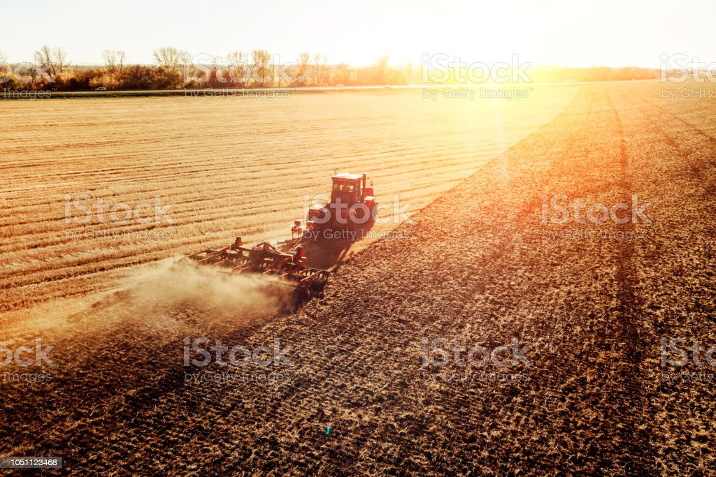 Agriculture machine harvesting crop in fields. Tractor pulls a mechanism for haymaking. Harvesting in autumn in the morning at dawn. agribusiness in the Altai region Russia stock photo