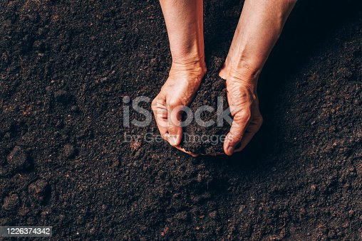 istock Agriculture, organic gardening, planting or ecology concept. Dirty woman hands holding moist soil. Environmental, earth day. Banner. Top view. Copy space. Farmer checking before sowing 1226374342