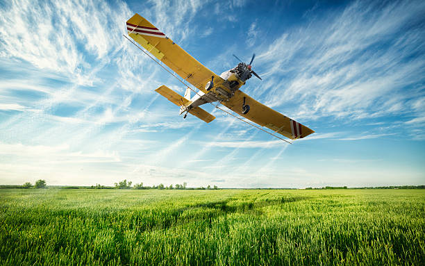 Agriculture Agriculture, low flying yellow plane sprayed crops in the field crop sprayer stock pictures, royalty-free photos & images
