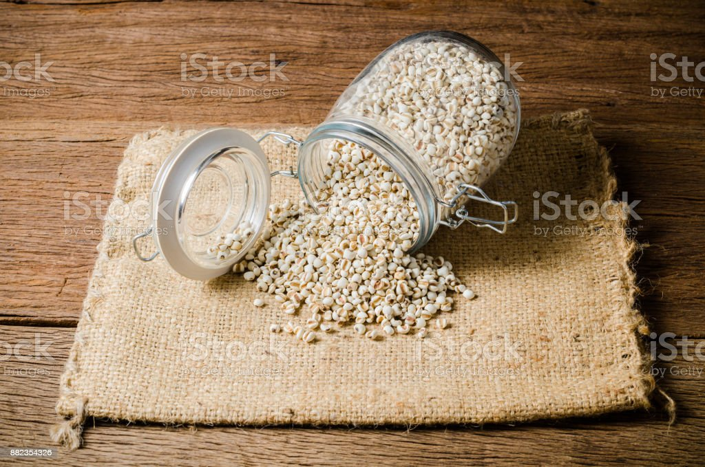 agriculture products ,job's tears stock photo