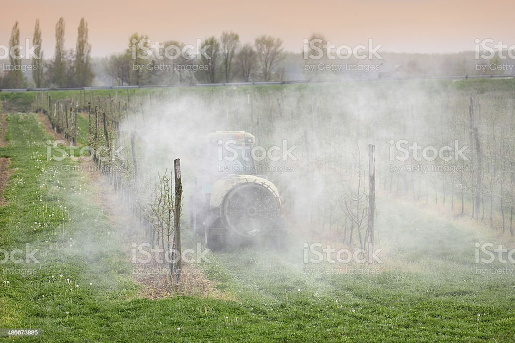 Agriculture, spraying of trees royalty-free stock photo