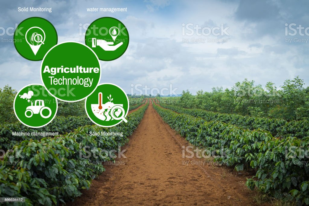 Agriculture Technology concept Agritech system coffee in Pakse Laos stock photo