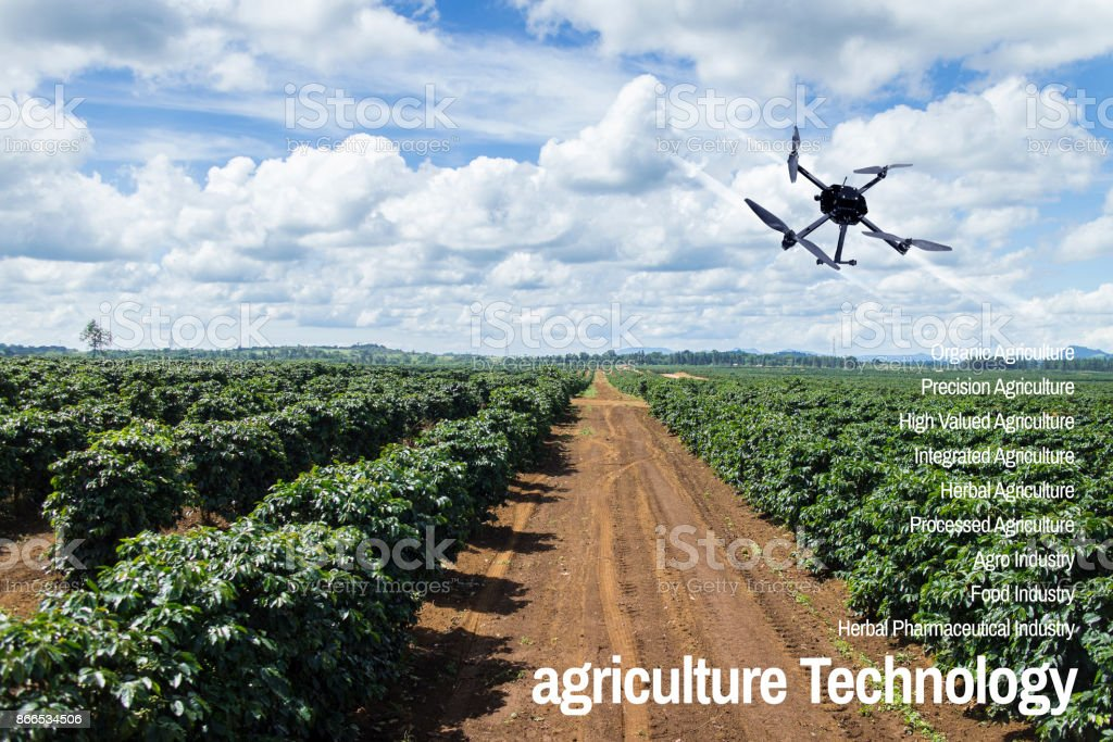 Agriculture Technology concept drone with flying  coffee plantation landscape stock photo