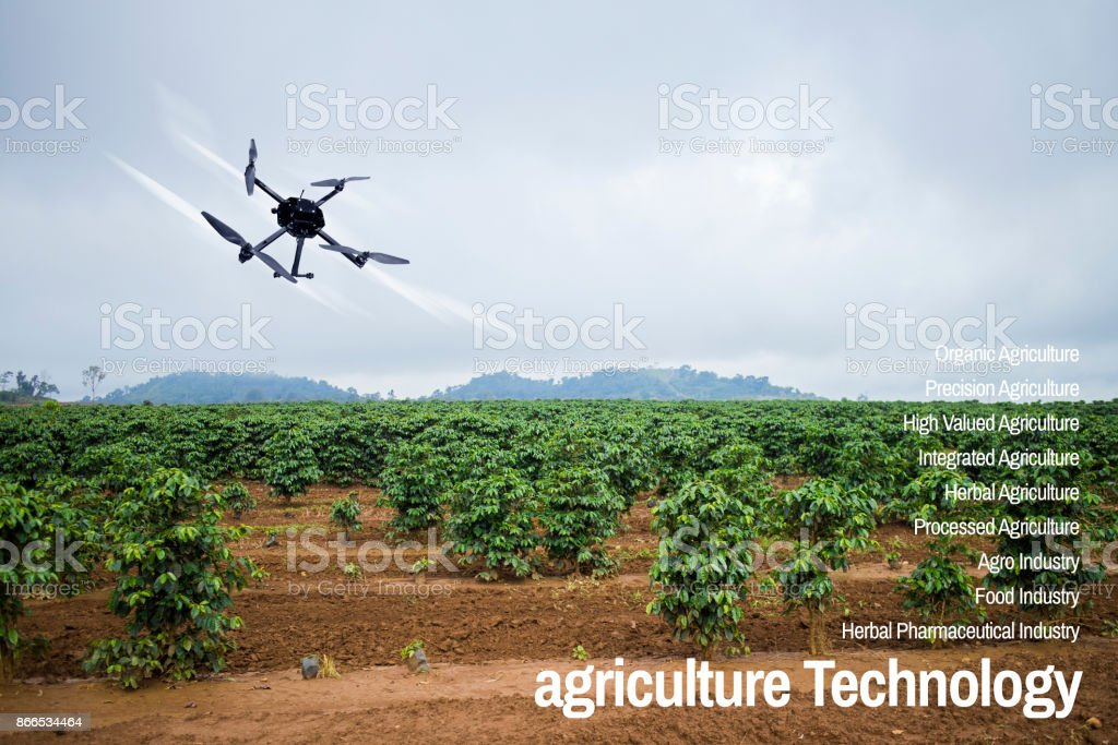 Agriculture Technology concept drone with flying  Young coffee plantation landscape stock photo