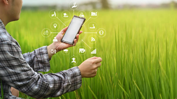 Agriculture technology farmer man using smartphone analysis data and visual icon. stock photo