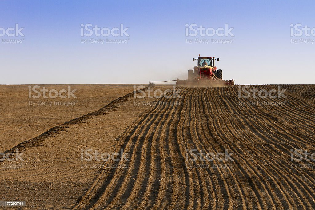 Agriculture tractor sowing seeds and cultivating field stock photo