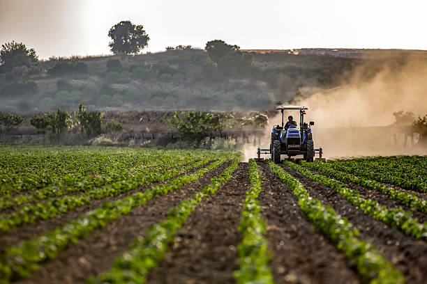 Agriculture With Machine Tractor mowing crops farm worker stock pictures, royalty-free photos & images