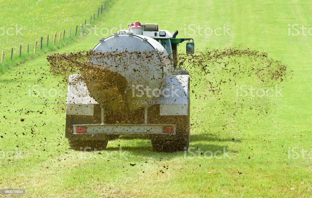 agricultura con tractor y la fertilización con estiércol en el campo - foto de stock