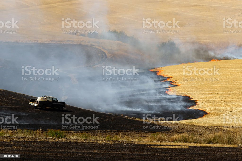 Agriculture Worker Burns Plant Stalks After Harvest Ground Fire stock photo