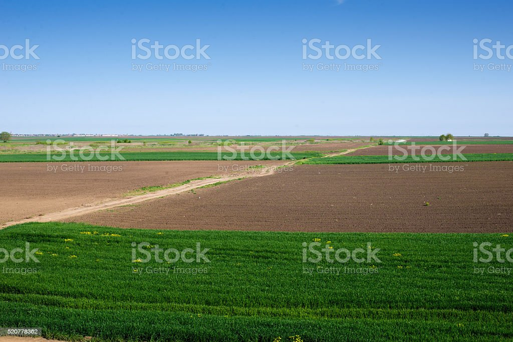 Agro campo com uma estrada - foto de acervo