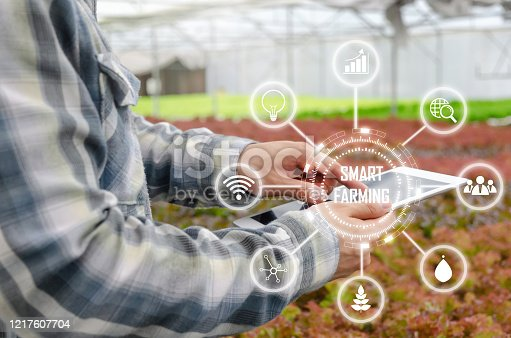 1047941544 istock photo agronomist or farmer using tablet for research and analysis data development with visual icon , organic hydroponic vegetable in greenhouse farm, digital technology agriculture, smart farming concept 1217607704
