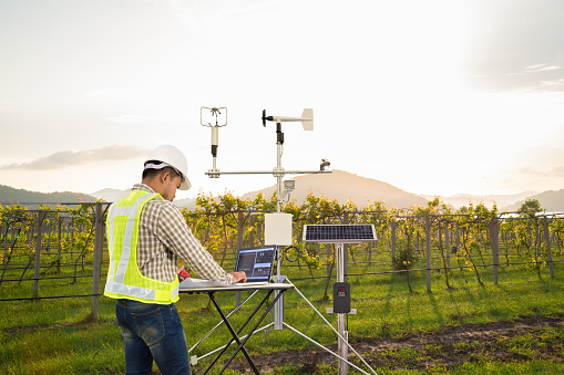 istock Agronomist using tablet computer collect data with meteorological instrument to measure the wind speed, temperature and humidity and solar cell system in grape agricultural field, Smart farm concept 1130498419