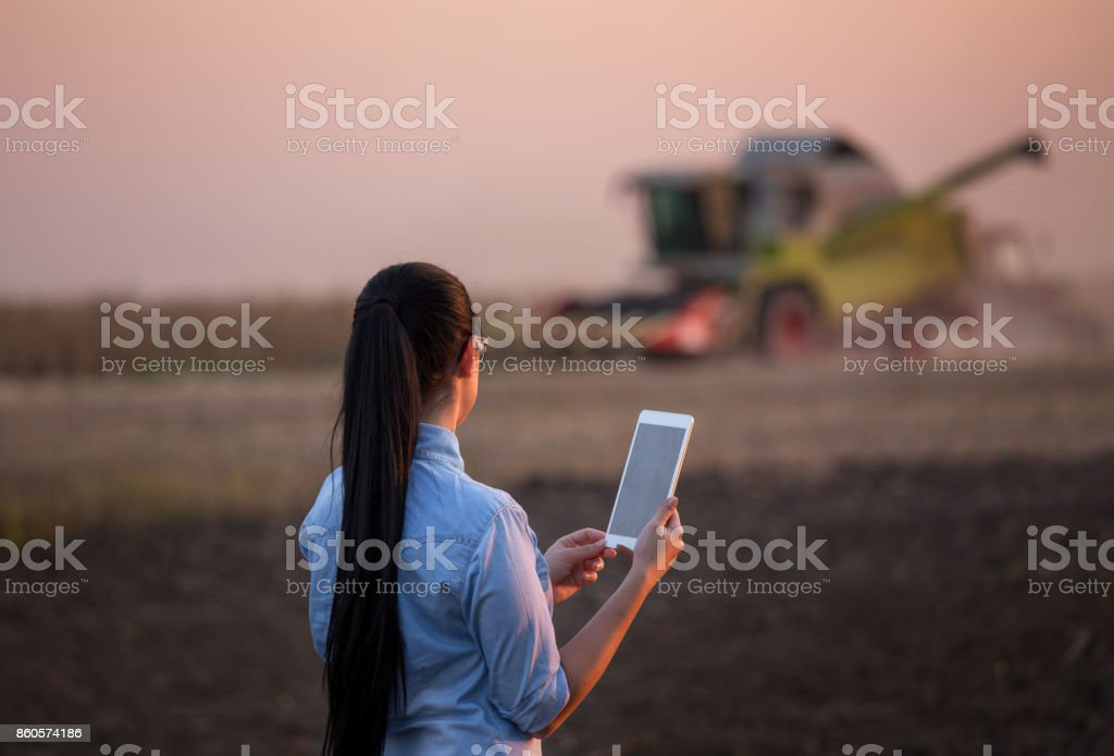 Agronomist with tablet and combine harvester stock photo