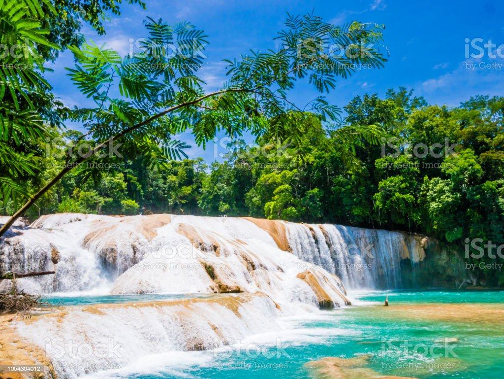 Agua Azul waterfalls in the lush rainforest of Chiapas, Mexico stock photo