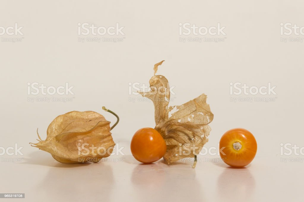 Aguaymanto - Physalis peruviana - Golden Berry still life royalty-free stock photo