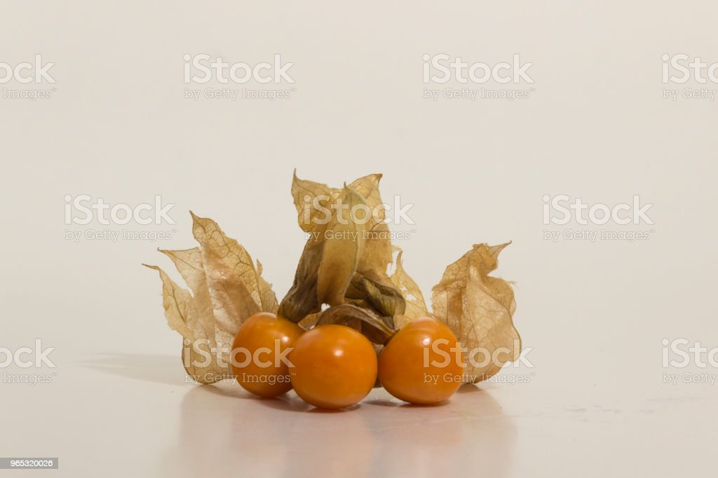 Aguaymanto - Physalis peruviana - Golden Berry still life royalty-free stock photo