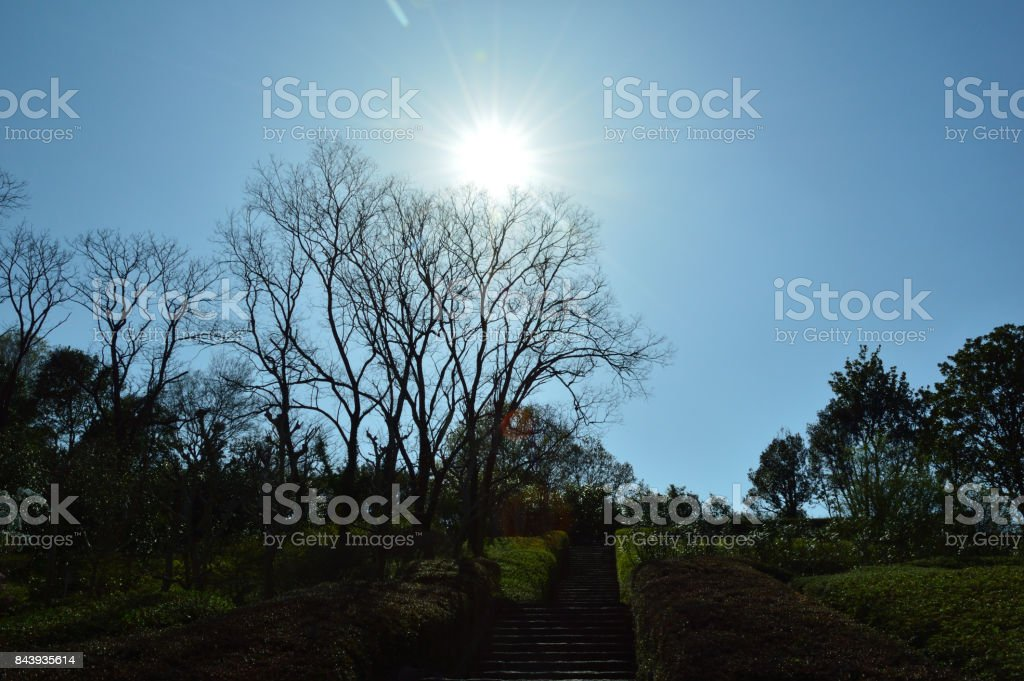 Aichiken ryokka center.The sun in the blue sky, and a long staircase stock photo