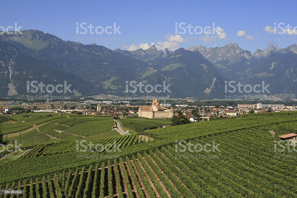 Aigle town with its vineyards and Chateau d'Aigle, Swiss stock photo