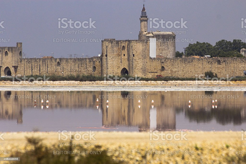 Aigues-mortes surrounding walls and pink birds in the Salt Basin royalty-free stock photo