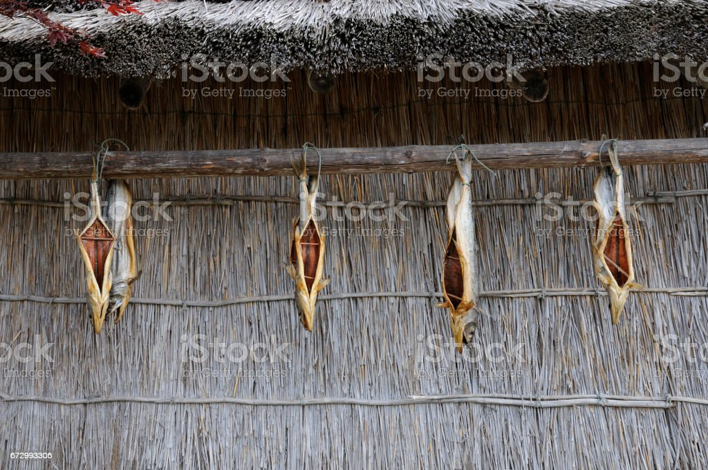 Ainu stock photo