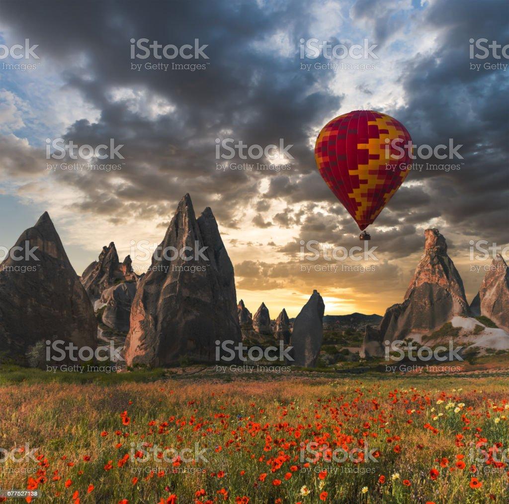 air balloon over poppies field Cappadocia, Turkey stock photo