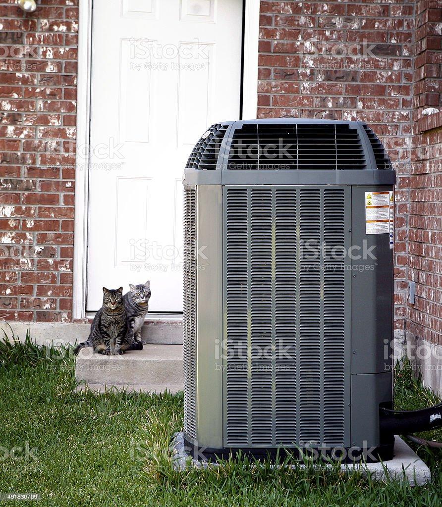 Acondicionador de aire y dos gatos - foto de stock