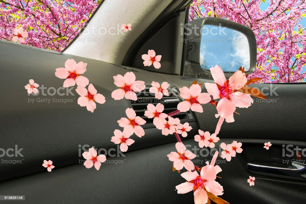 air conductors car freshenera ac aroma flowers background stock photo