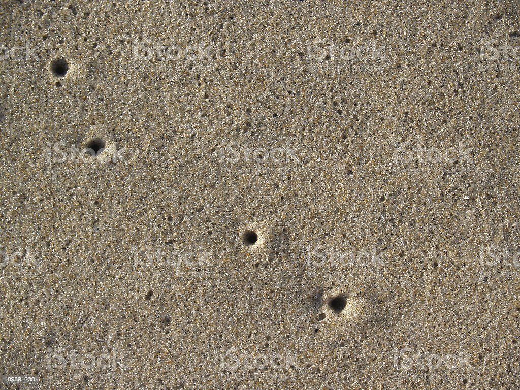 Air Holes from Sand Crabs on Beach at Ocean Grove stock photo