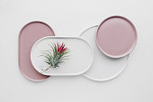 Empty pink and white ceramic plates on a white background, creative flat lay minimal tableware