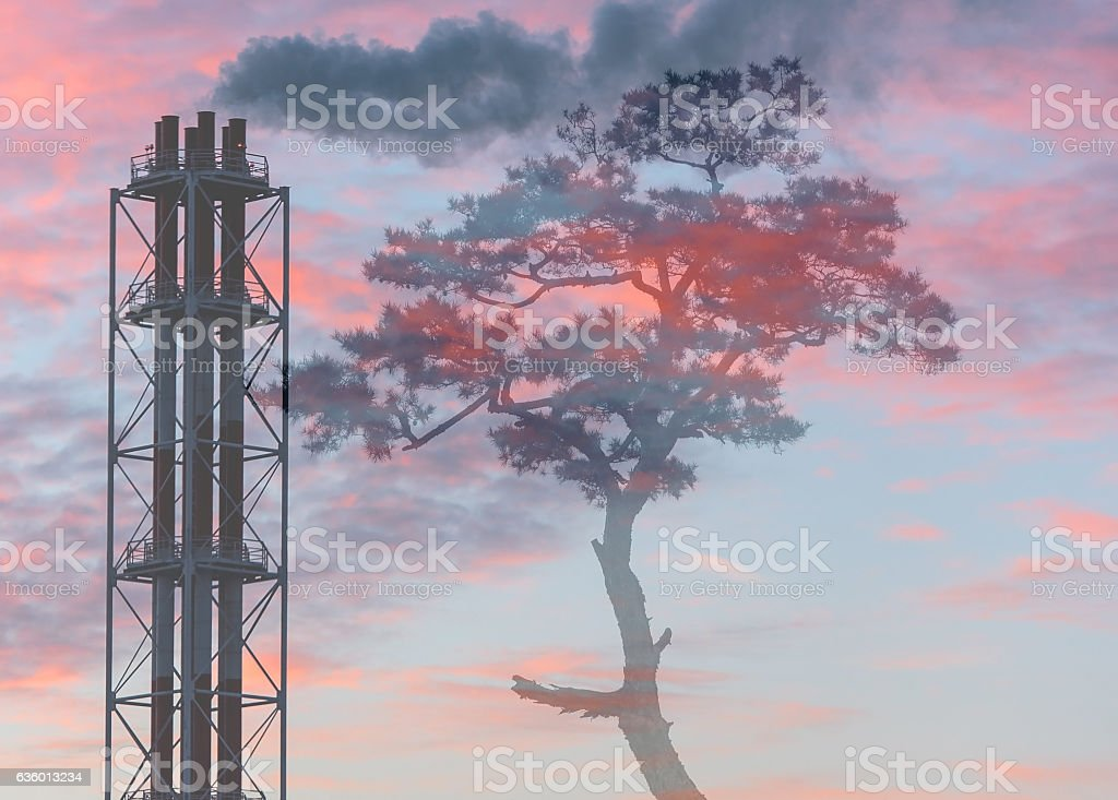 Air Pollution over a park, ecological catastrophy, concept picture stock photo